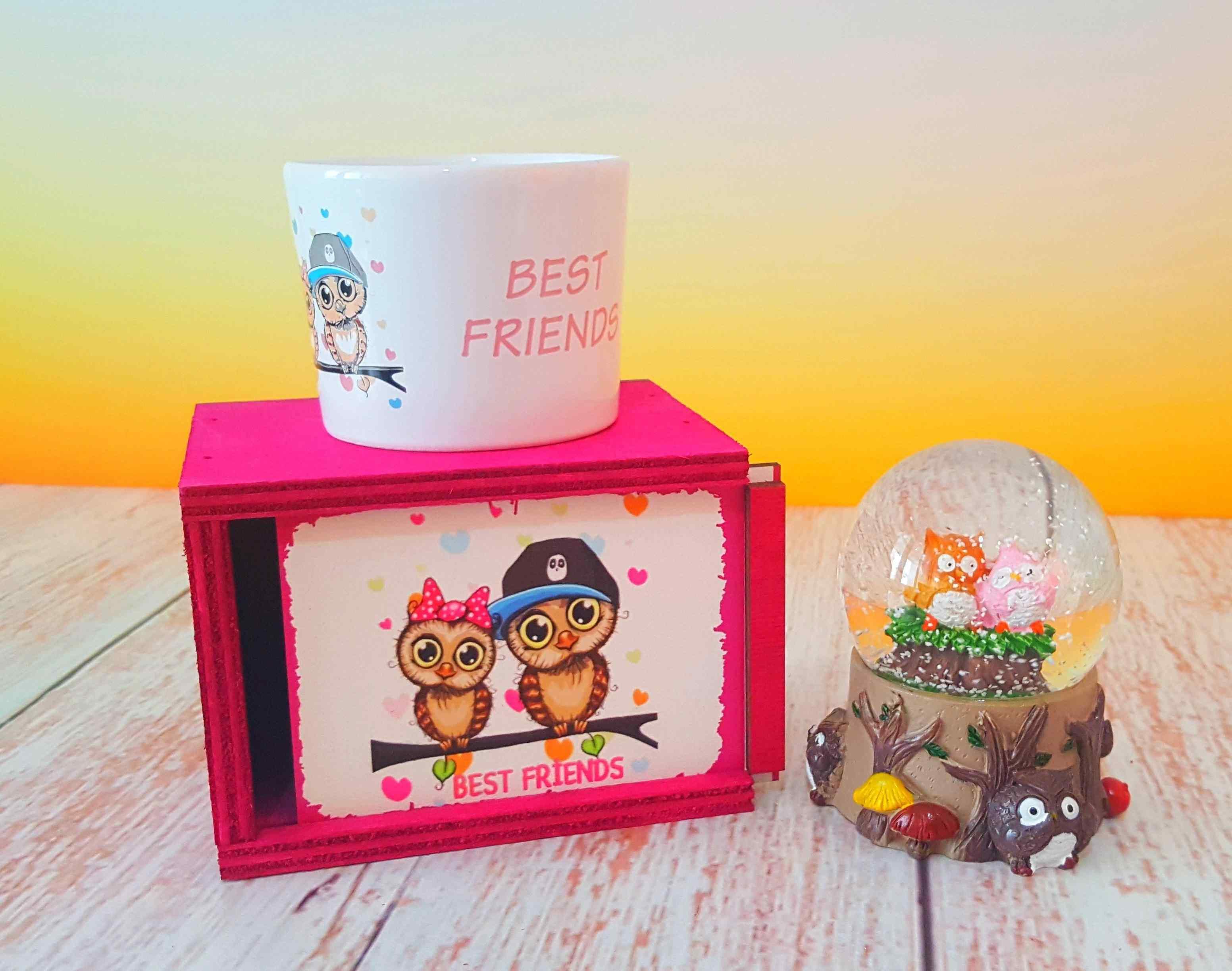 Best Friends Kar Küresi Ve Renkli Kutulu Kupa Arkadaşa Hediye Seti